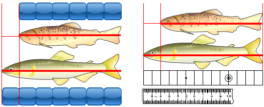 任意単位による測定と普遍単位による測定